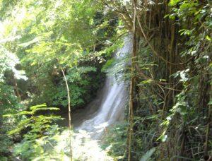 Air Terjun Goa Selarong