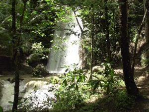 Wisata Alam Grojogan Pucung