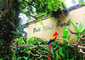 Bali Bird Park Gianyar