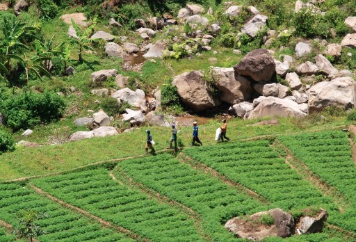Desa Wisata Kampoeng Goenoeng