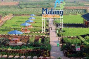 Desa Wisata Malang