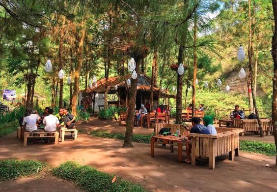 Desa Wisata Puncoksumo