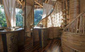 Sharma Spring Bamboo