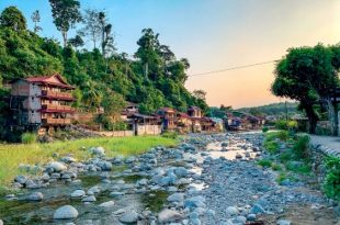 wisata alam Bukit Lawang