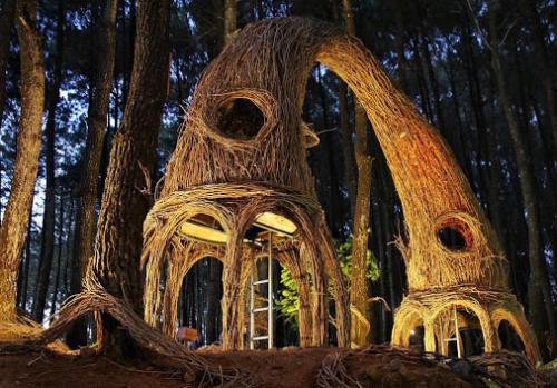 Hutan Pinus Pengger2