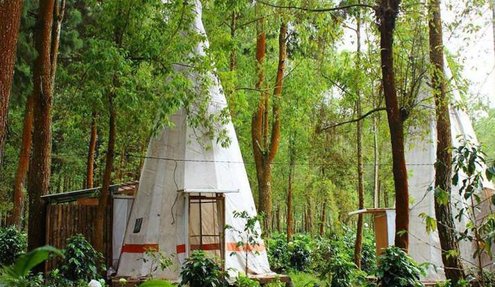 kampung indian