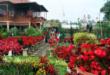 Taman Wisata Di Jawa Barat Ini Mampu Melepaskan Penat Dengan Rutinitasmu Yang Padat