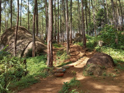 Brujul Adventure Park Kebumen