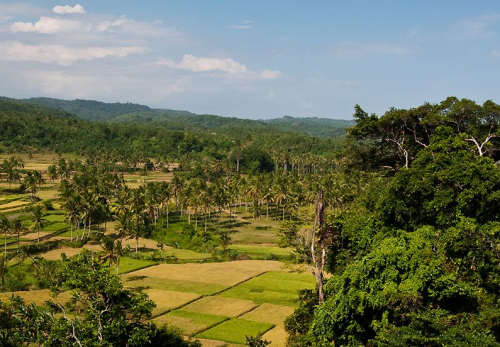 Bukit Cariang
