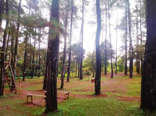 Bukit perkemahan Trijaya