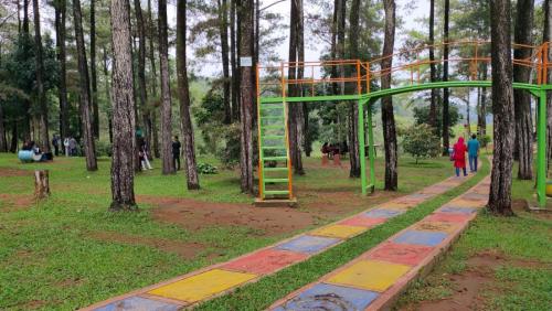 Bukit perkemahan Trijaya2