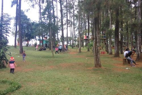 Bukit perkemahan Trijaya3