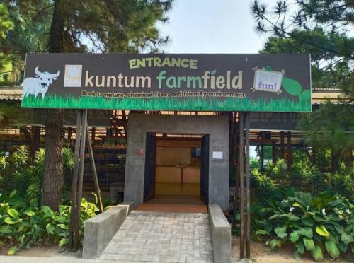 Kuntum Farm Field3