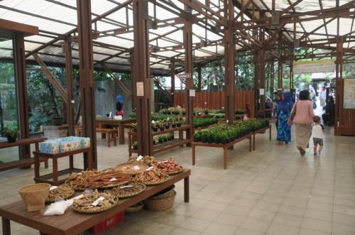 Kuntum Farm Field4