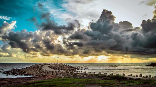Pantai Glagah3
