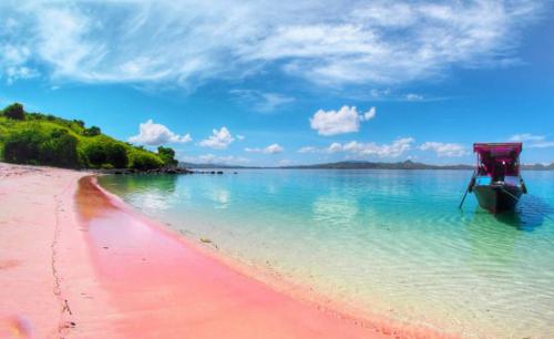 Pantai Pink 1