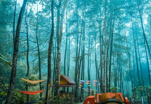Srambang Park Ngawi