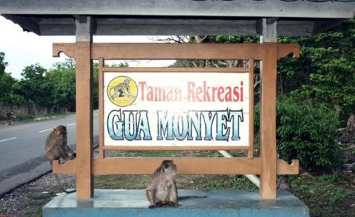 Taman Rekreasi Gua Monyet