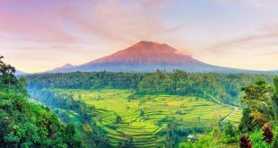 alam Bali