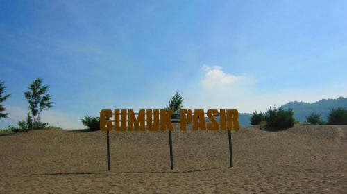 Gumuk pasir Parangkusumo 1