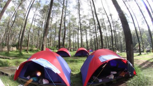 Tenda Dome Grafika Cikole