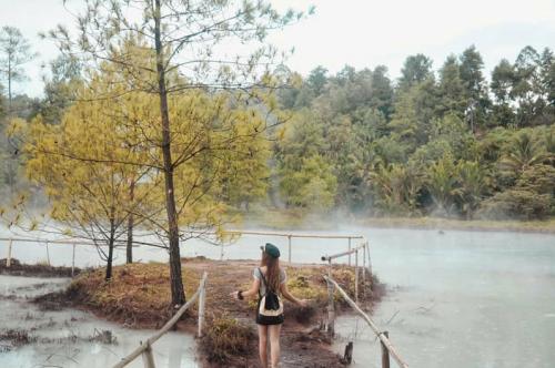 Hutan Pinus Lahendong3