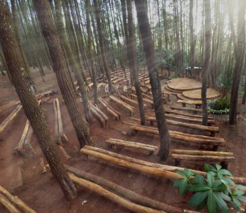 Hutan Pinus Mangunan Becici