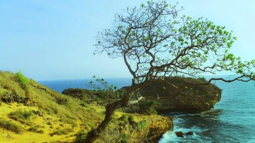 Pantai Kesirat Yogyakarta