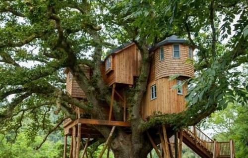 Rumah Alam Adventure Park Manado3