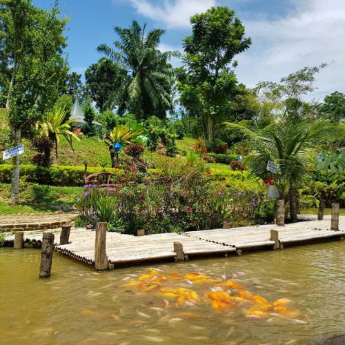 The Lehu Garden3
