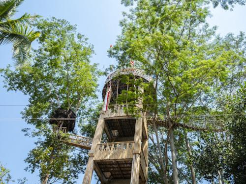 Rumah Pohon Bukit Lemped