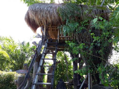 Rumah pohon berukuran kecil