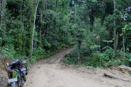 Taman Nasional Bogani Nani Wartabone2