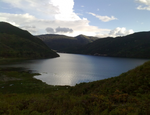 Danau Paniani