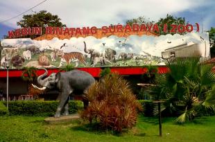 Kebun Binatang Surabaya