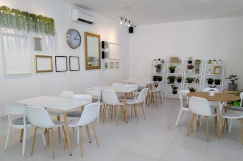 Lemon8 Cafe