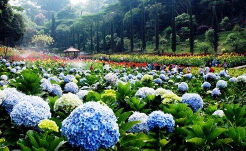 Taman Selecta Batu Malang