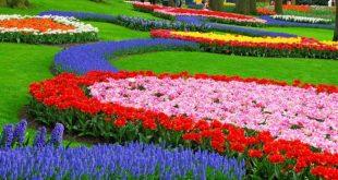 Wisata Terlengkap di Taman Selecta Batu Malang Wajib Anda dan Keluarga Kunjungi