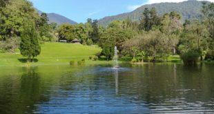 kebun raya cibodas wisata alam memukau yang wajib kamu kunjungijpg